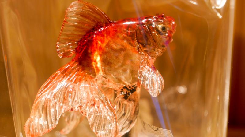 飴細工金魚