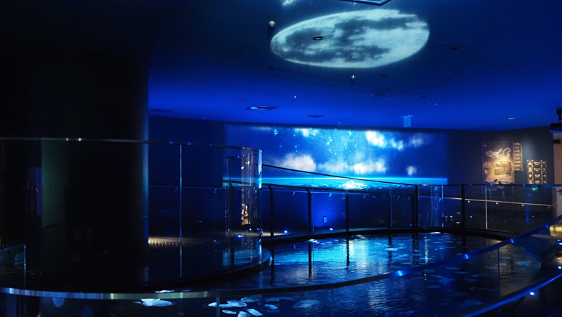 月とクラゲ すみだ水族館