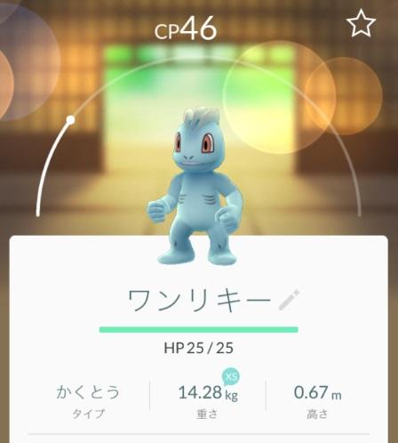 ポケモンGO錦糸公園ワンリキーR