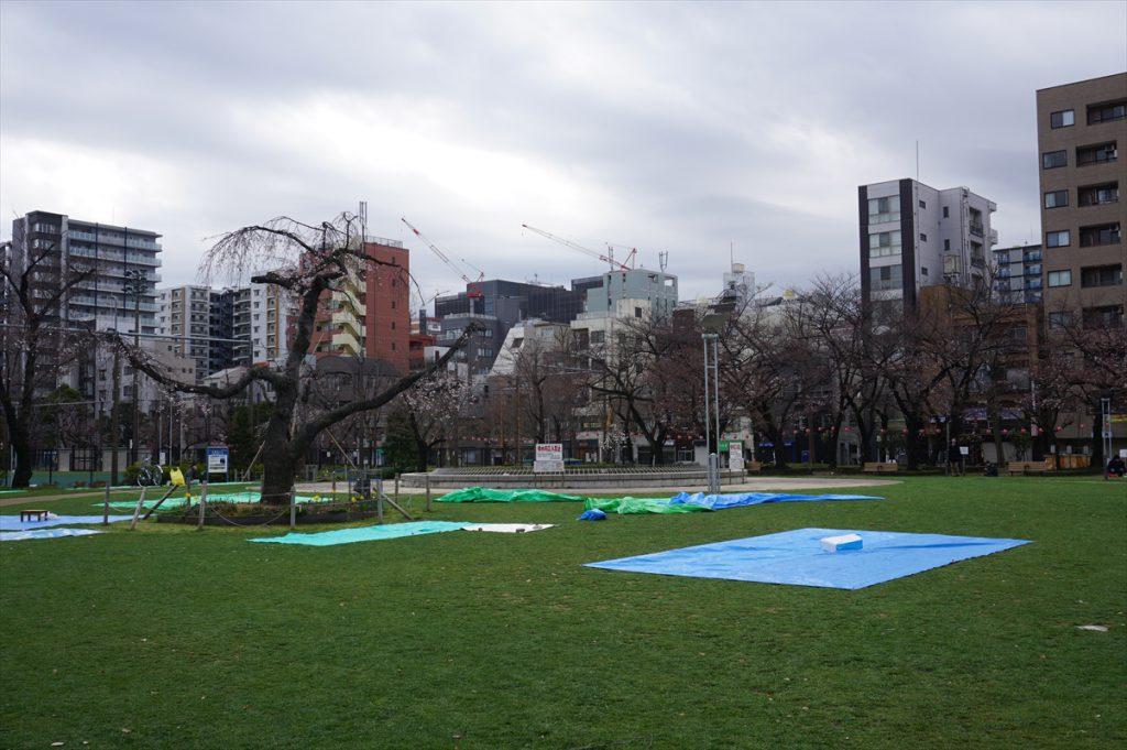 錦糸公園 水と緑と花の広場