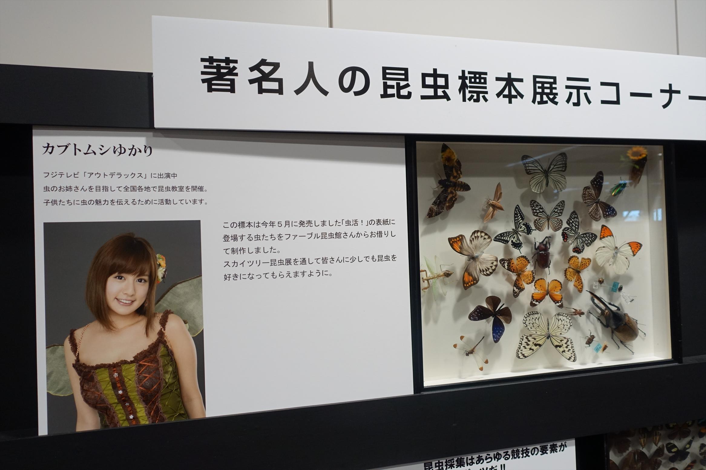 大昆虫展inスカイツリータウンソラマチ094