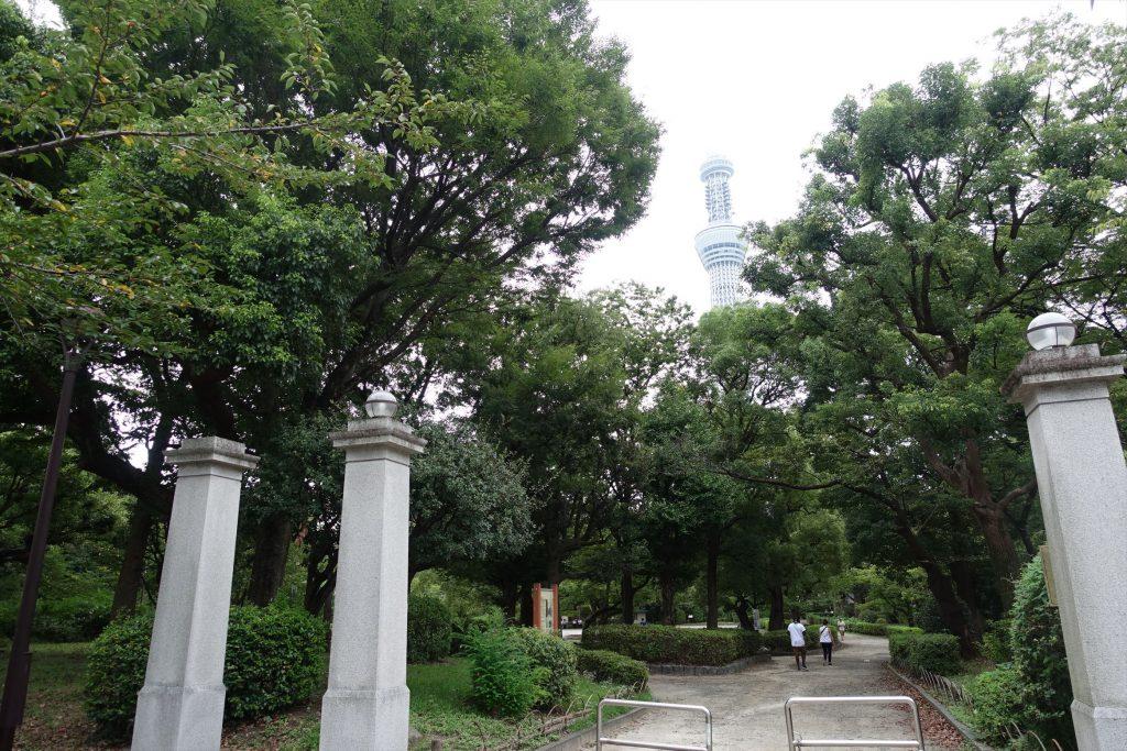 墨田公園ポケモンGO057