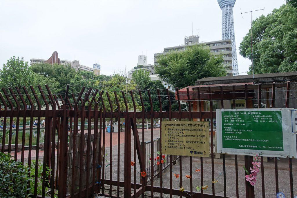 墨田公園ポケモンGO064