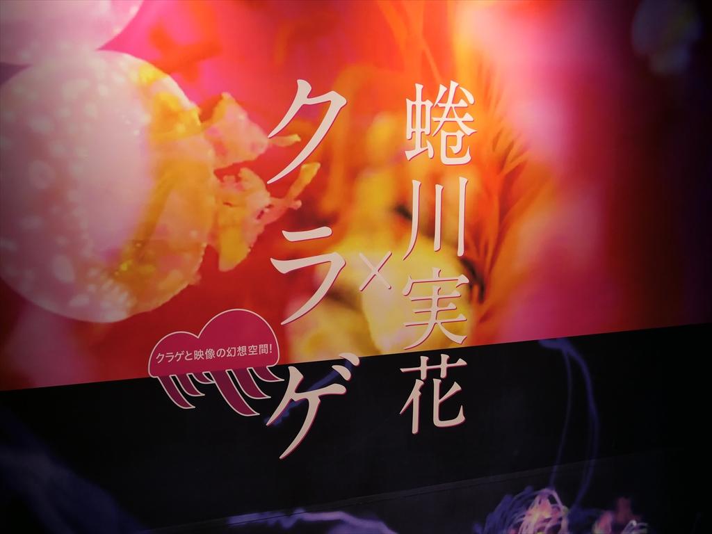 蜷川実花×クラゲ044