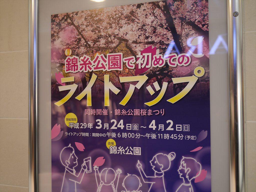 錦糸公園お花見ライトアップ
