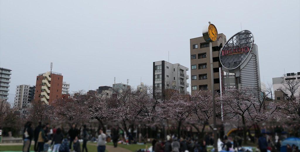 錦糸公園桜2017006_RS