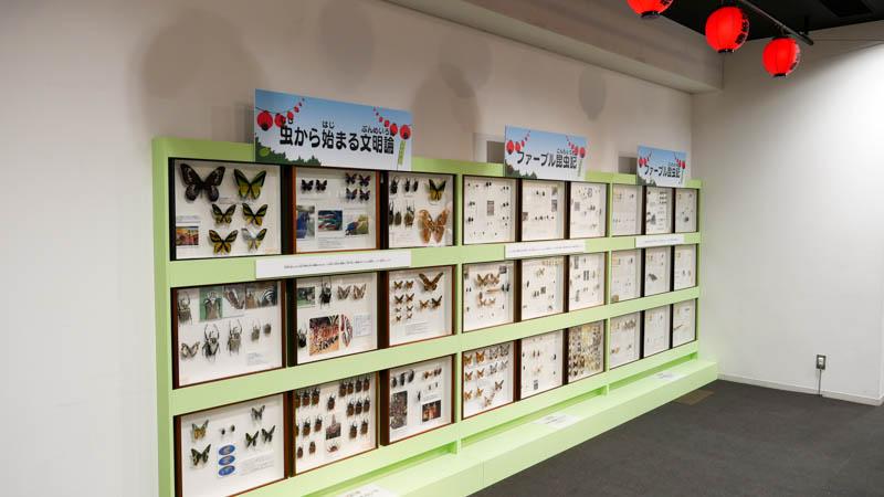 大昆虫展2018