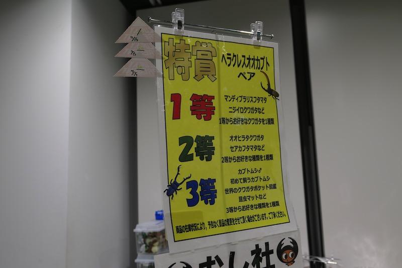 大昆虫展in東京スカイツリータウン2017s