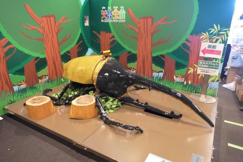 大昆虫展2017