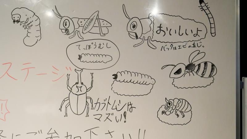 昆虫食教室