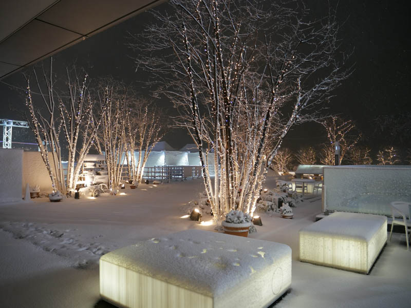 スカイツリーとソラマチと大雪と-36