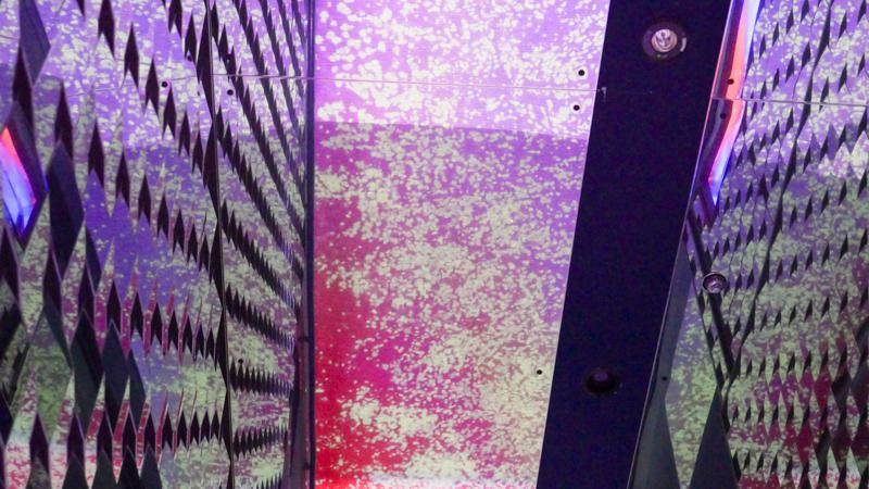 すみだ水族館 桜とクラゲ