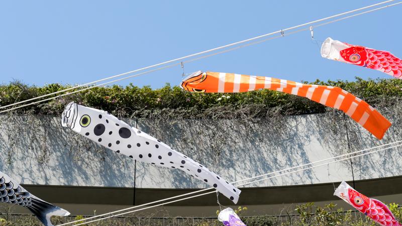 北十間川|東京スカイツリータウン こいのぼりフェスティバル