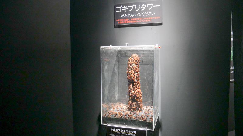 ゴキブリタワー