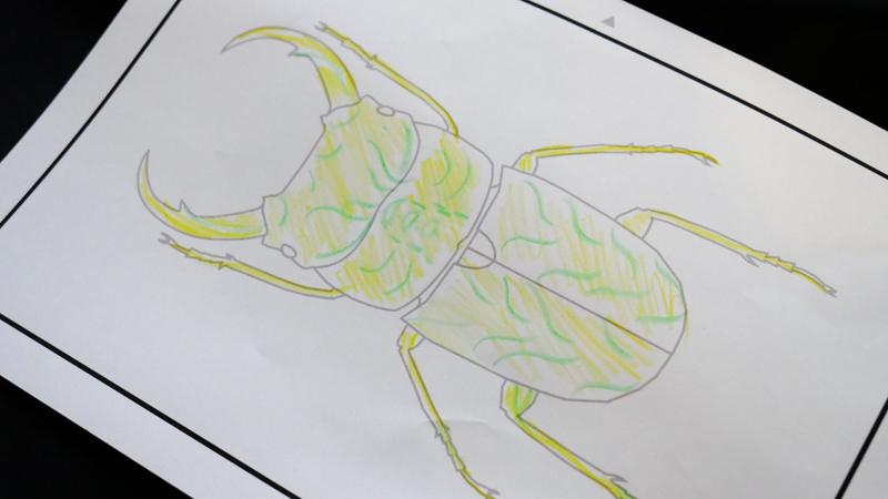 お絵描き昆虫